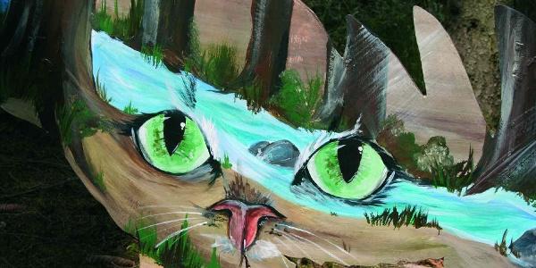 Katzen-Augen-Blicke