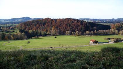 Blick zum Hügel der Ruine Langenegg.