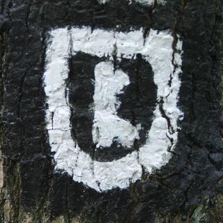 Markierung Wappenweg