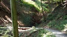 Rur-Olef-Route/Etappe 3: Einruhr - Gemünd