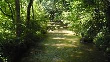 Erlebnisweg: Die Aach - Lebensader des Linzgau (Unteruhldingen - Bermatingen - Frickingen - Überlingen)