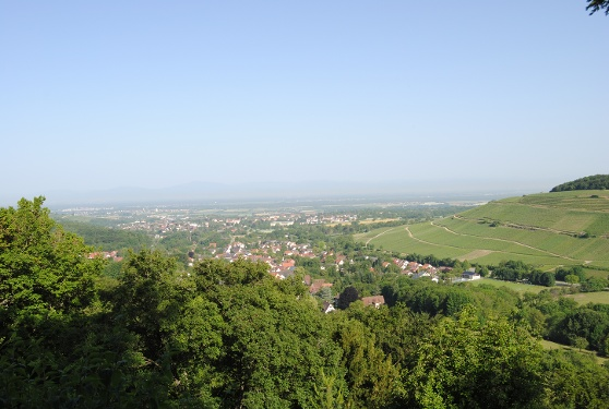 Radtour nach Neuenburg und Schliengen  von Badenweiler aus