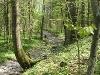 Herrliche Wanderwege....   - © Quelle: Hohenlohe + Schwäbisch Hall Tourismus e.V.