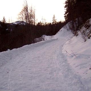 Weg zum Naturfreundehaus.