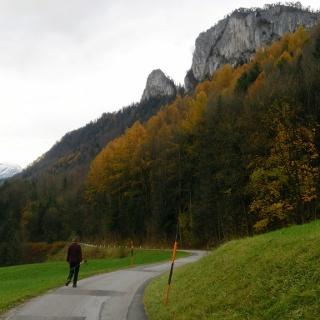 Straße nach Kaltenhausen mit Barmsteinblick
