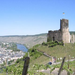 Blick auf die Burgruine Landshut.