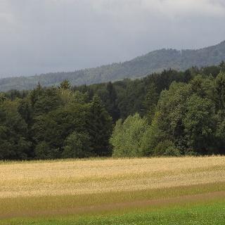 Nach dem Waldweg genießen wir den weiten Blick über Felder und Berge.