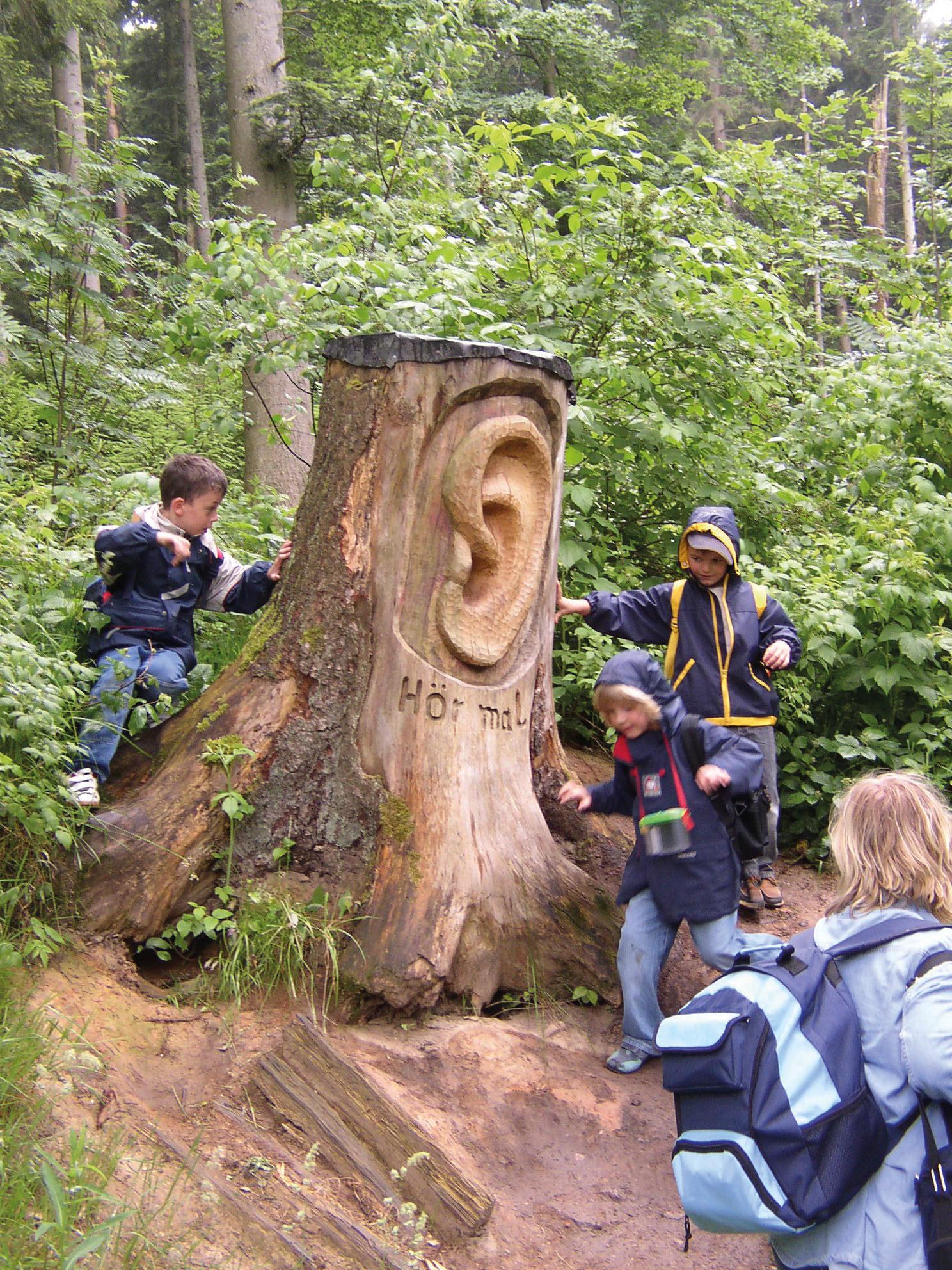 Auf dem Quellenerlebnispfad gehen auch Kinder gerne wandern