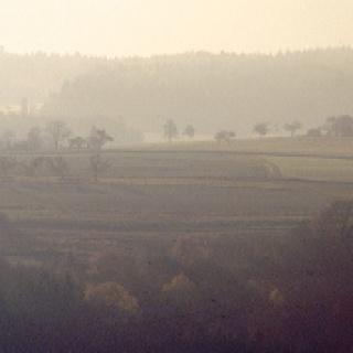 Morgenstimmung zwischen Trechtingshausen und Bacharach.