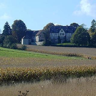 Das Schloss Rossach.