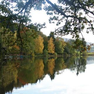 Das bunte Herbstlaub spiegelt sich im Wasser des Hengelesweiher.