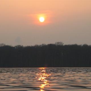Am Liepnitzsee kann man wunderbar wandern und baden.