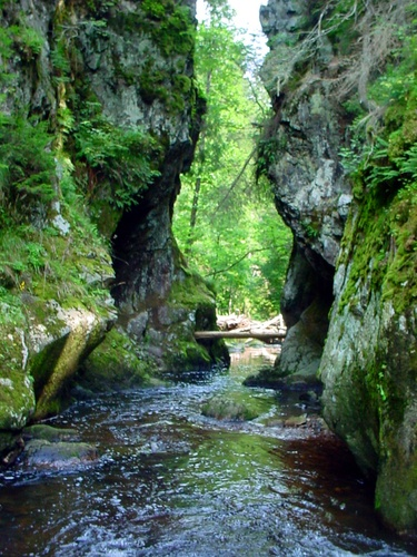 Hochschwarzwald - Wutachschlucht