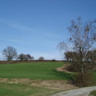 Landschaft vor Leimbach