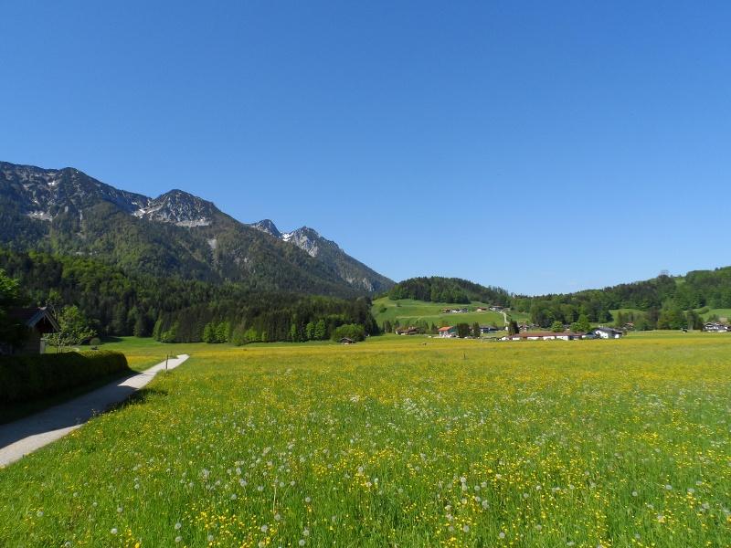 Wunderbarer Ausblick auf den Kienberg