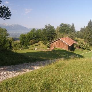 Hinter der Senkele-Alp bietet sich ererneut ein schöner Blick auf das Alpenpanorama.