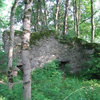 Die Ruine Rothenstein nahe Bad Grönenbach.
