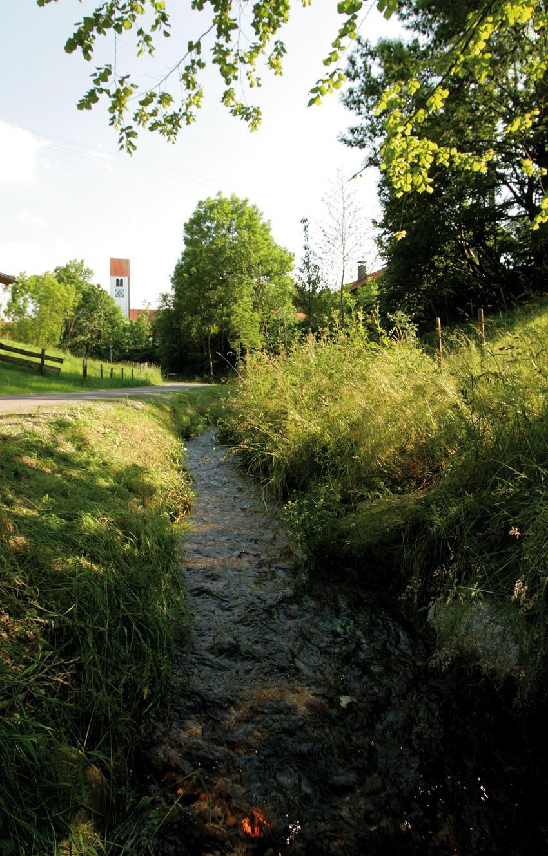 Der Weg führt uns durch ein wild romantisches Bachtal (Werner Böglmüller)