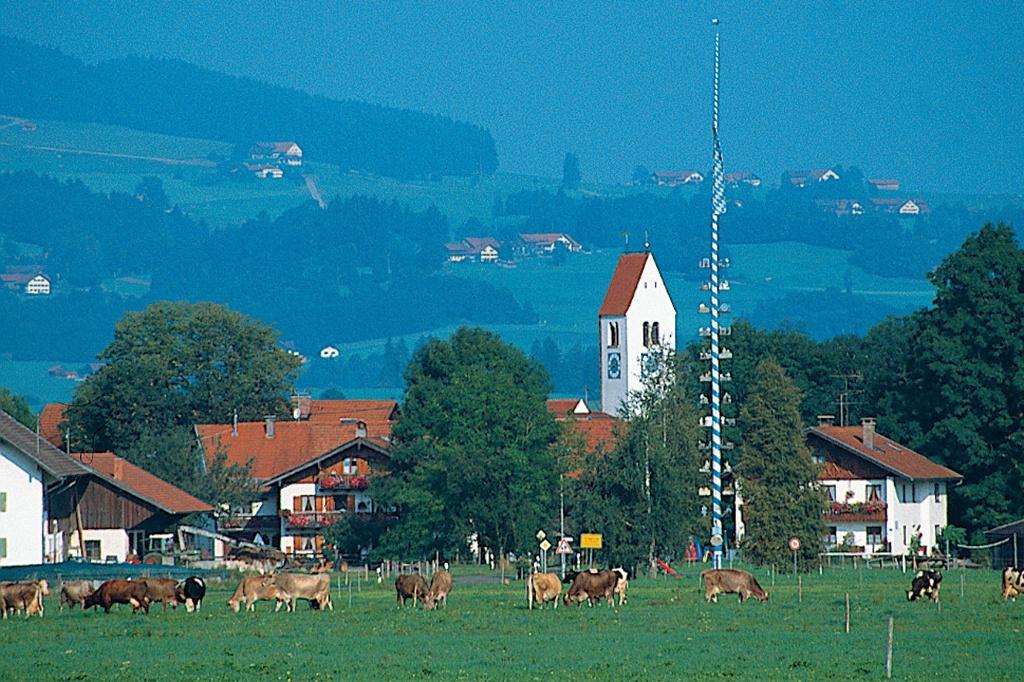 Über saftig grüne Wiesen gelangen wir zum Nachbardorf Urspring (Werner Böglmüller)