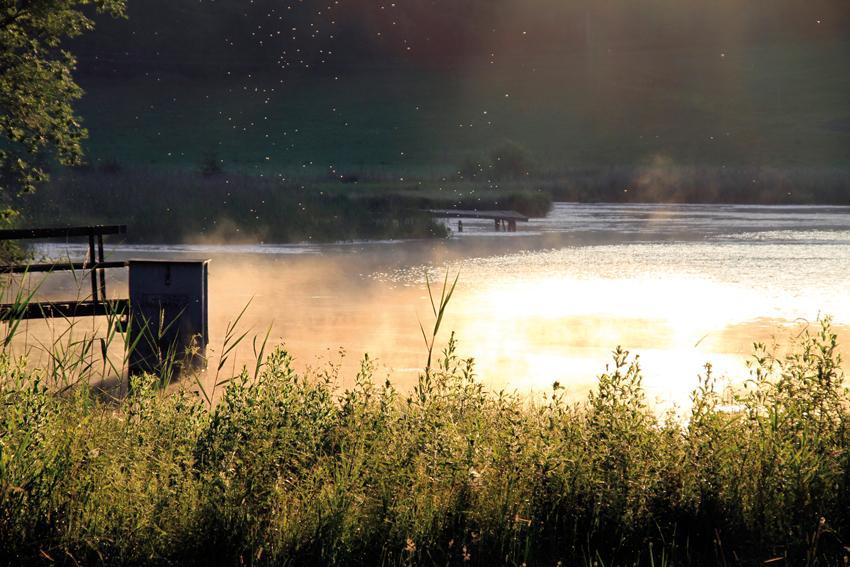Sanft steigen an einem sonnigen Herbsttag die Nebel auf. (Andreas Klausmann)