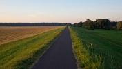 Foto Der Elberadweg zwischen Magdeburg und Randau