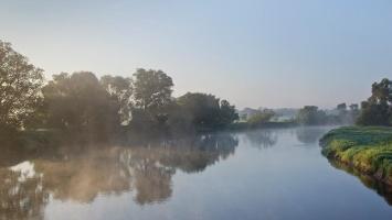 Foto Der Elberadweg in Dessau am frühen Morgen