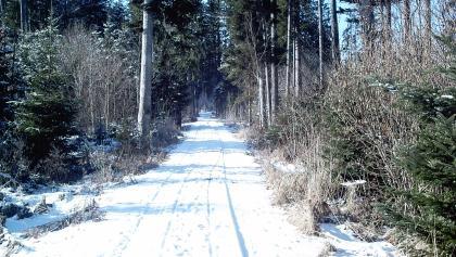 Auf verschneiten Pfaden wandern wir dahin.