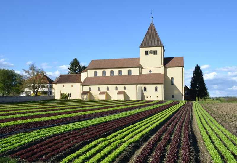 Kirche St. Georg mit Salatfeld