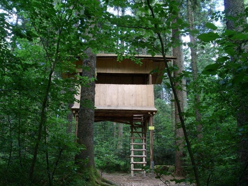 freudenstadt naturerlebnispfad urlaubsland baden w rttemberg. Black Bedroom Furniture Sets. Home Design Ideas