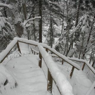 Treppe Richtung Stausee