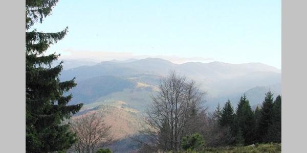 Auf dem Kandel-Höhenweg bieten sich beeindruckende Ausblicke.