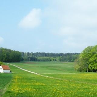 Rutschenfeld
