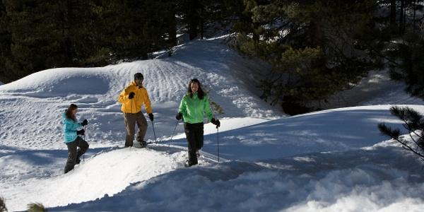Par le paysage d'hiver jusqu'à Findeln