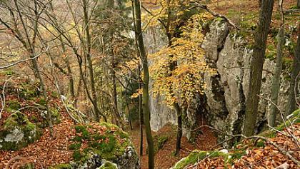 Naturschutzgebiet Weltenburger Enge