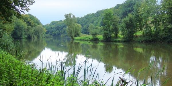 Still und idyllisch liegt der Blaubachsee im Wald.