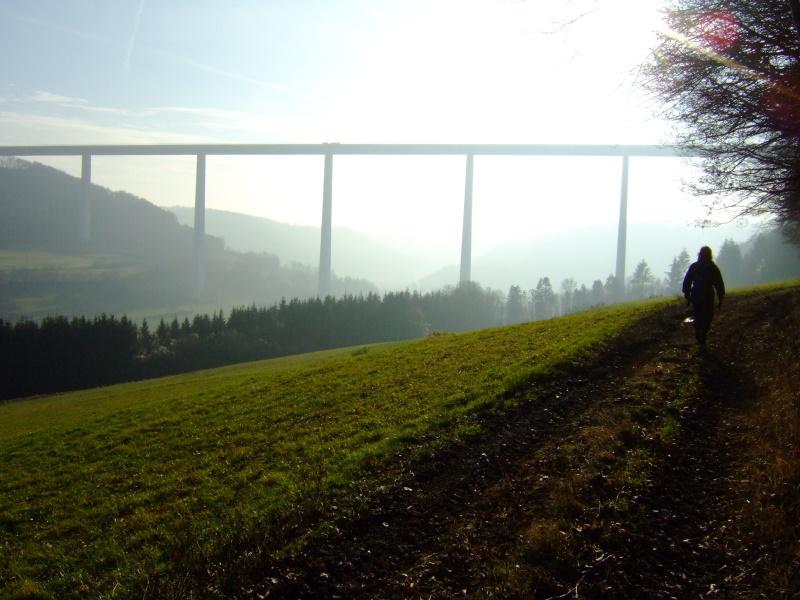 Futurischtisch wirkt die Brücke in der Natur.   - © Quelle: www.wegpunkt.de