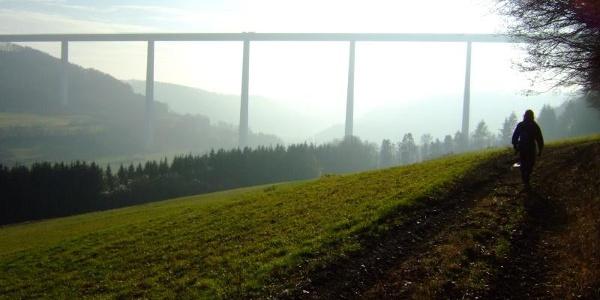 Futurischtisch wirkt die Brücke in der Natur.