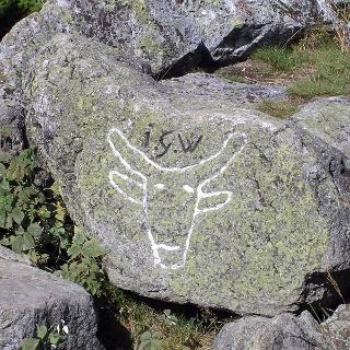 Auf einem Felsen am Ochsenkopf finden wir das Wahrzeichen des Berges.