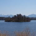 Blick über den Staffelsee mit Bergpanorama.
