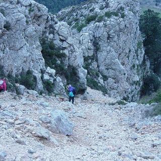 Abstieg vom Puig Tomir.