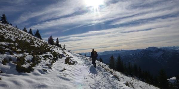Wunderschöne Höhenwege zum Rotwandhaus (1737 m)