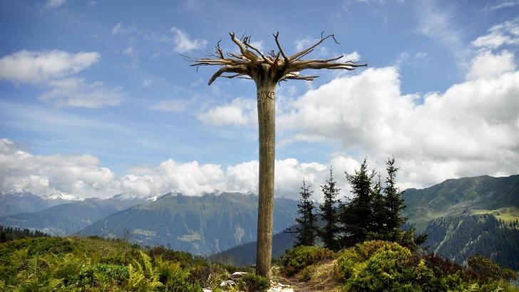 Der Mythenbaum