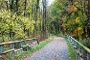 Balkantrasse in Burscheid im Herbst