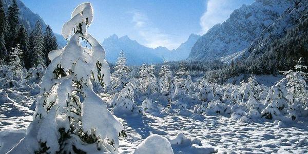 Winter im Wimbachtal