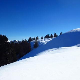 Winterwunderland am Rossfeld