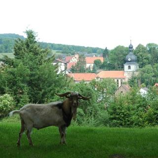 Der Ort Oepfershausen blickt auf eine fast 900-jährige Geschichte zurück.