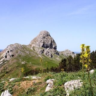 M.Ritagli di Lecca 1209m mit Novaragipfel