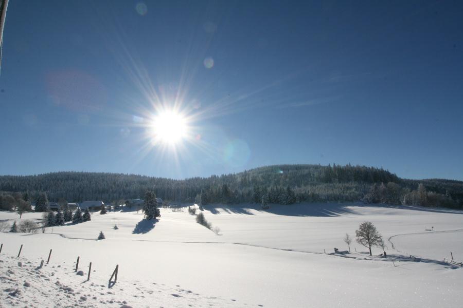 Durch die traumhafte Winterlandschaft Herrenschwands