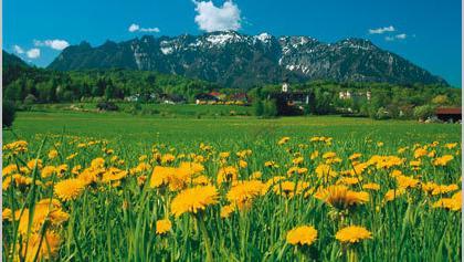 Marzoll mit Lattengebirge.