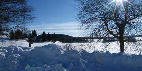 Blick zum Oberen Stieger See